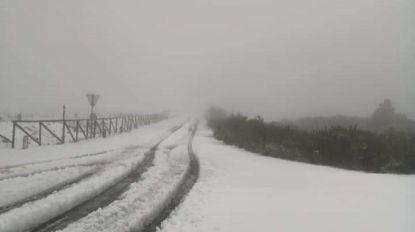 Serras da Madeira já estão cobertas por um manto branco. Veja as imagens