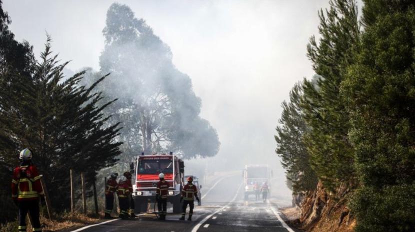 Fogo em mato em Sintra mobiliza 119 operacionais e 2 meios aéreos