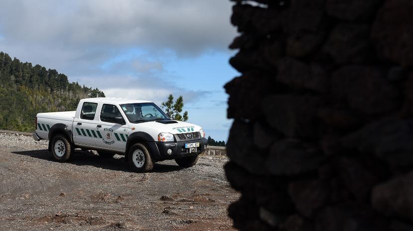Policia Florestal identifica autores de duas queimadas ilegais na Ribeira Brava