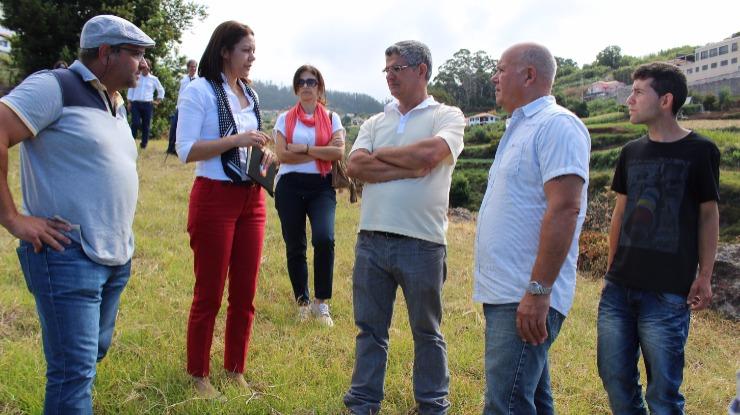 Célia Pessegueiro quer criar percursos turísticos na Ponta do Sol