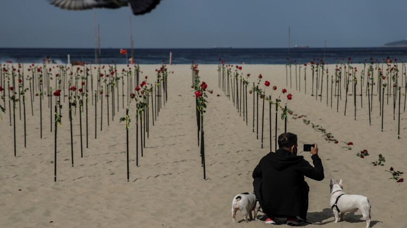 Covid-19: Brasil lembra 500 mil vítimas mortais com rosas na praia de Copacabana (com fotos)