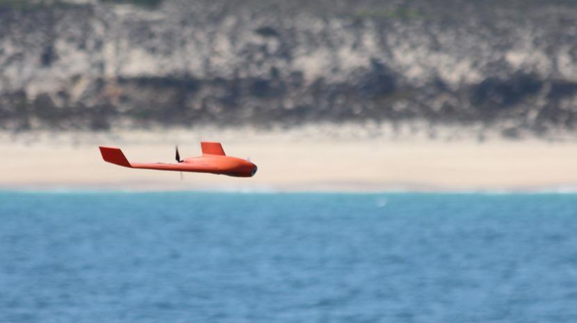 """Marinhas de 17 países da NATO testam """"'drones' do mar"""" em águas portuguesas"""