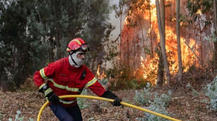 150 bombeiros e 4 meios aéreos combatem fogo em zona de pinhal em Faro