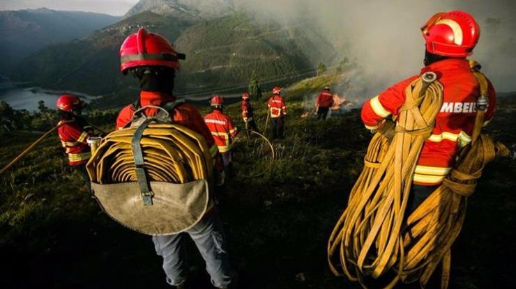 Incêndio em mato preocupou bombeiros de Santa Cruz