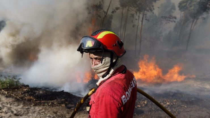 Municípios querem apoio europeu para floresta face às alterações climáticas