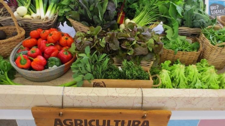 NÓS, Cidadãos! quer maior aposta na Agricultura Biológica