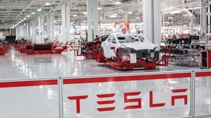 Inovação grega atrai investimento da Tesla para centro de pesquisa tecnológica
