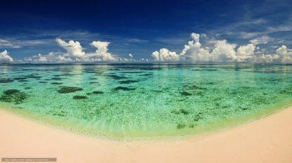 Vagas de calor no mar estão há um século a aumentar