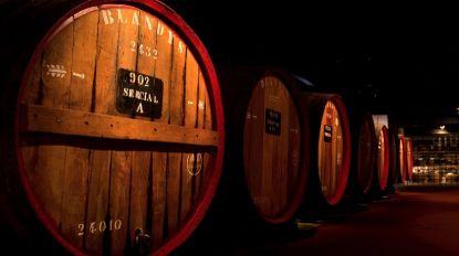 Madeira Wine Company e Escola Hoteleira da Madeira assinam protocolo esta terça-feira