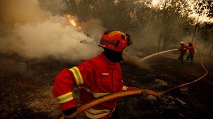 Portugal vai enviar ajuda para combate a incêndios na Grécia