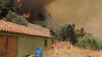 Mais de 1.400 operacionais e dois meios aéreos no combate às chamas em Monchique