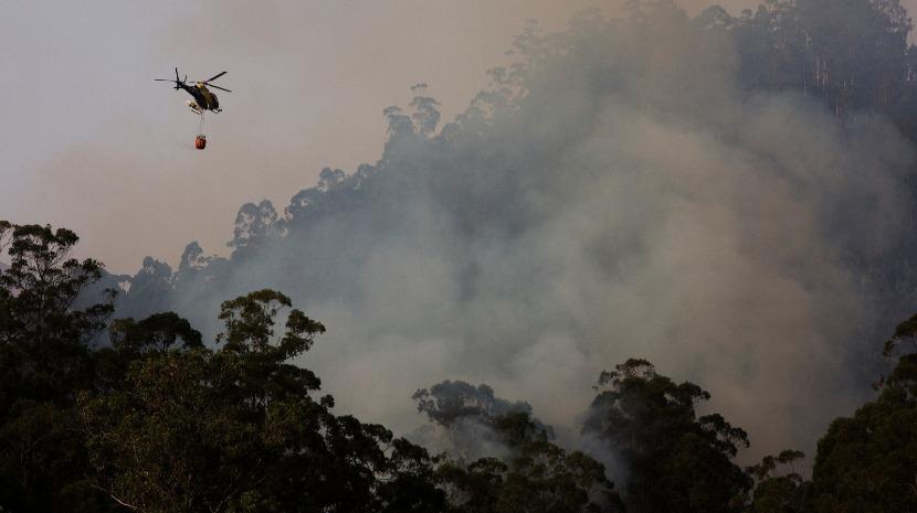 Santa Cruz e Machico em risco elevado de incêndio de domingo a terça-feira, diz IPMA