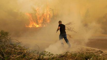 Incêndios ativos em Loures, Paredes de Coura, Braga e Albergaria-a-Velha