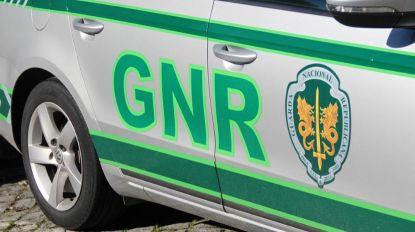 Detido suspeito de assassinar mulher na Golegã