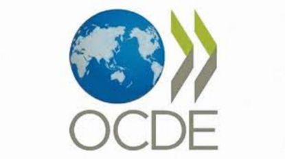 Relatório da OCDE confirma défice de meios para combater corrupção - sindicato