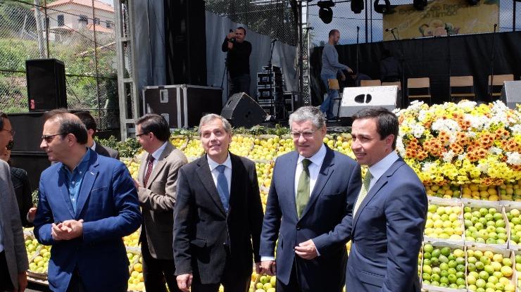 Governo Regional quer combater importação de produtos agrícolas