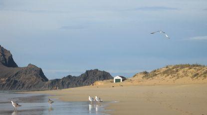 Porto Santo é 'Praia Acessível, Praia para Todos!'