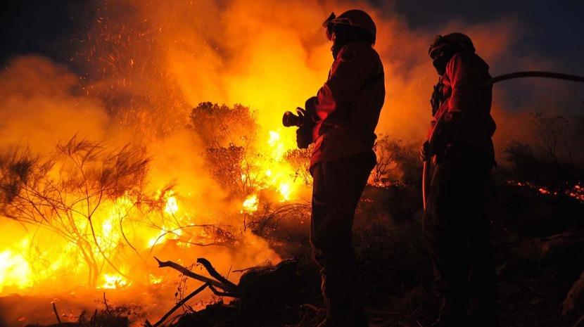 Mais de 240 operacionais combatem fogo em Monchique
