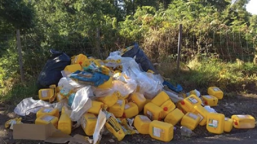 Polícia Florestal identifica empresa responsável por despejo ilegal na Camacha