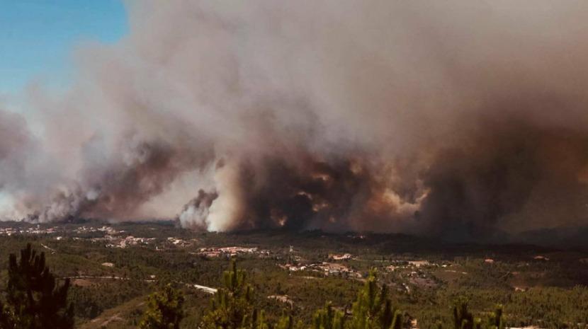 Detido incendiário florestal no concelho de Castelo Branco