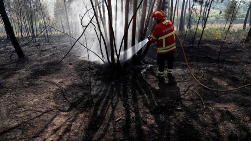 Incêndio de Vila de Rei e Mação dominado em 90% e sem frentes ativas