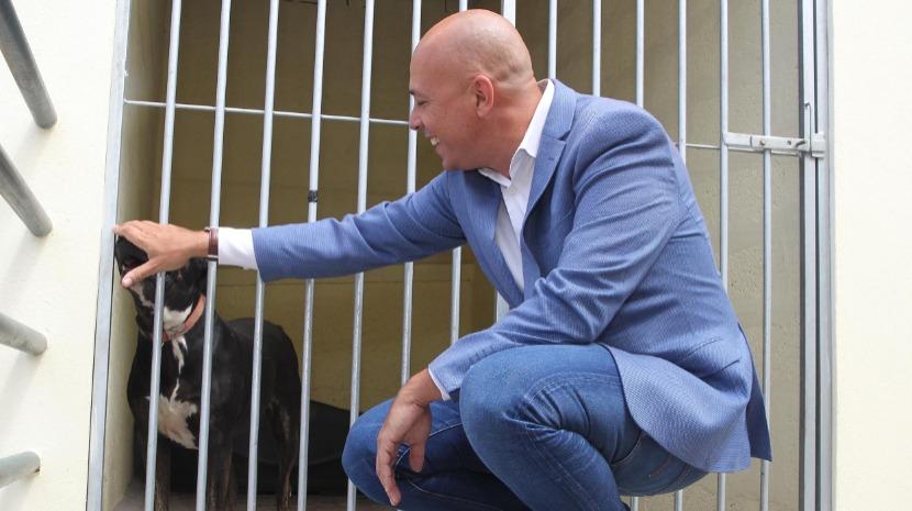 Causa animal deve estar no centro das políticas, diz Cafôfo
