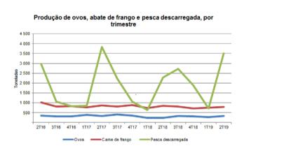 Produção de ovos e pescado capturado aumentam na Madeira