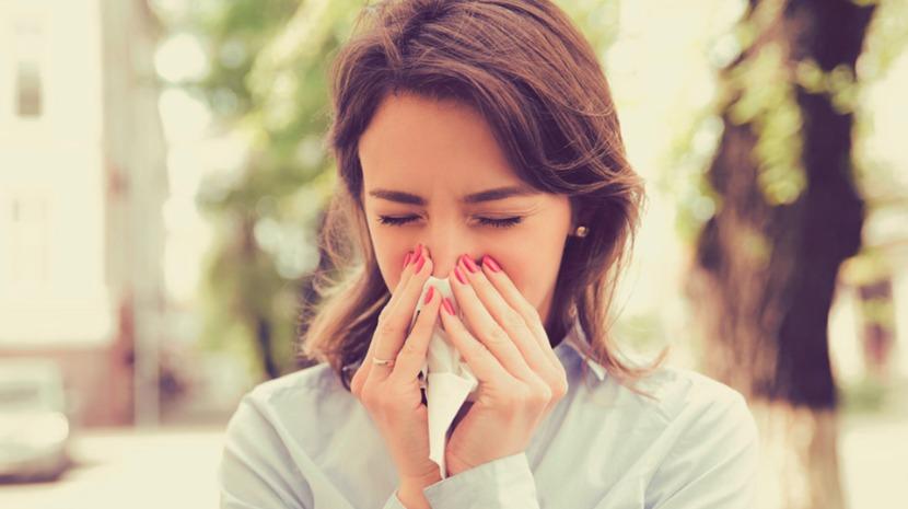 Conferência na UMa dá a conhecer as plantas alergénicas a evitar nos espaços verdes