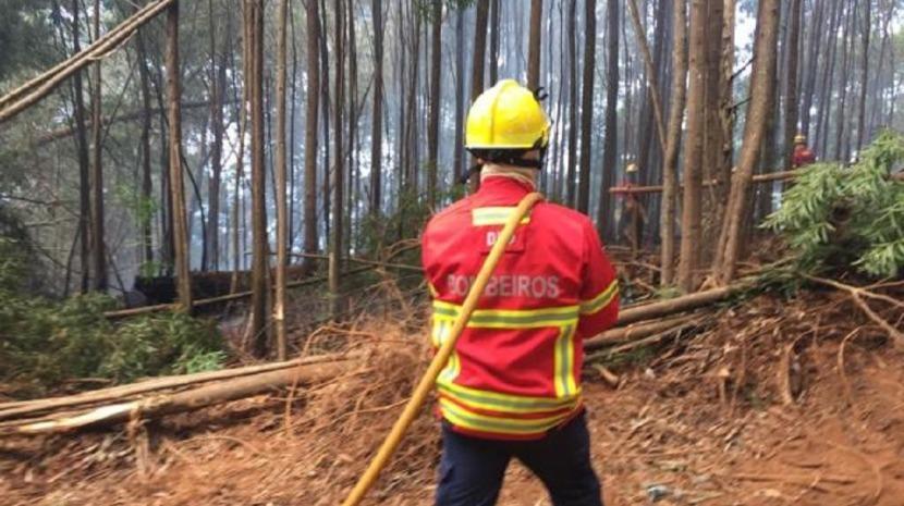 Incêndio no Porto Moniz já está extinto. Equipas no terreno para evitar reacendimentos