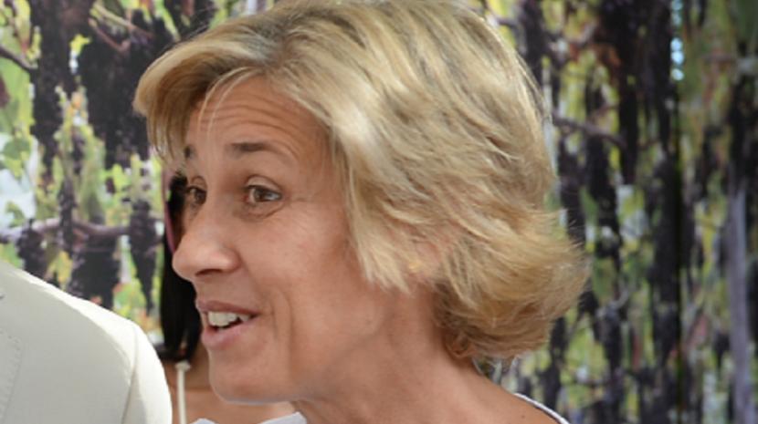 Saiba quem irá presidir ao Conselho Diretivo do Instituto do Vinho