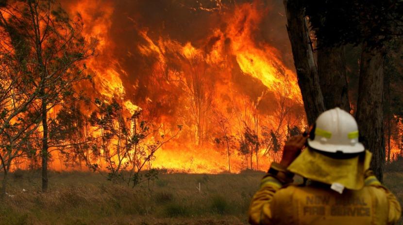 Estado australiano declara estado de emergência devido a incêndios fatais