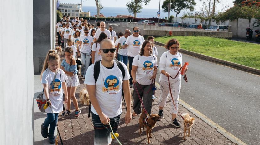 Nova campanha de vacinação gratuita para cães arranca amanhã no Funchal - jm-madeira.pt