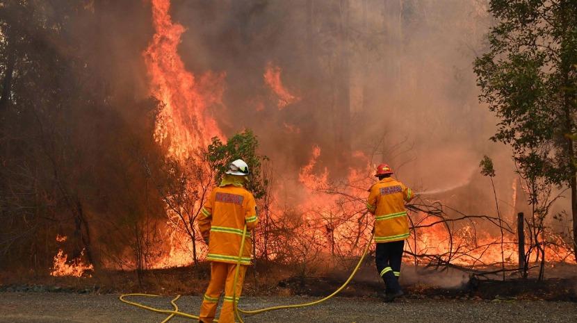 Milhares de australianos protestam e pedem demissão do PM face a incêndios