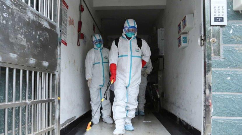 Bélgica confirma primeiro caso no país de infeção pelo novo coronavírus