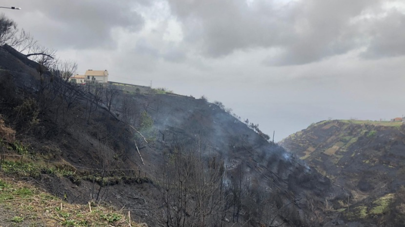 fire in Madeira: the burnt earth that remains